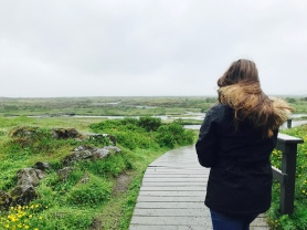 Taking in the views of Thingvellir National Park